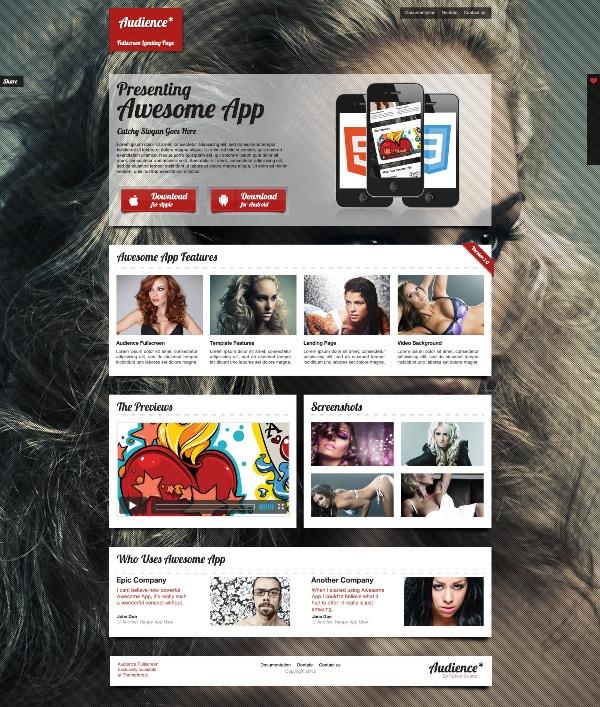Audience WordPress Fullscreen Landing Page