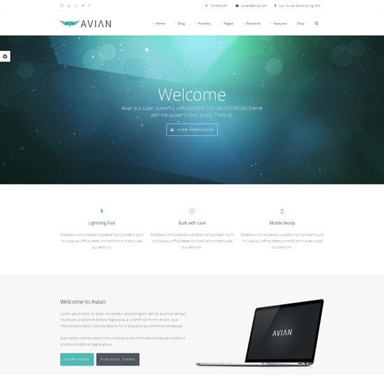 Avian-best-WordPress-theme-2014