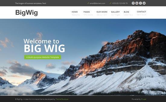 BigWig-Modern-Corporate-Drupal-Theme