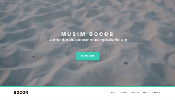 Bocor – Bootstrap template with nice animation