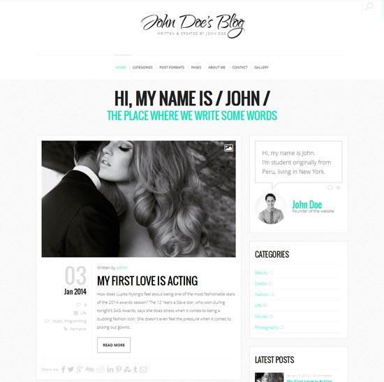 John-best-WordPress-theme-2014