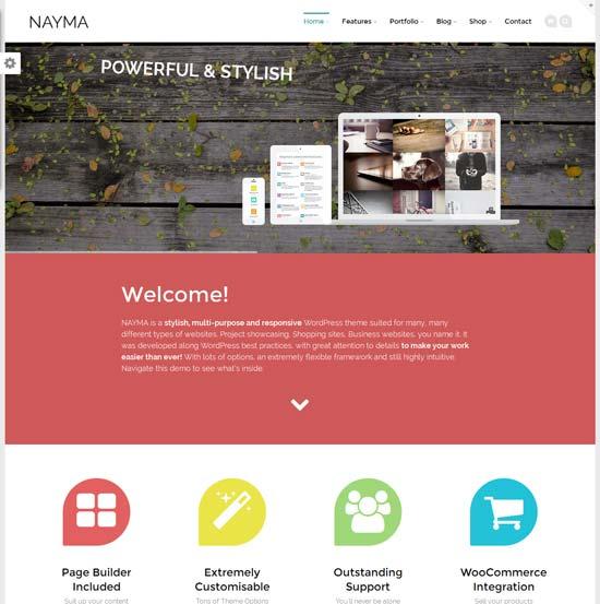Nayma-best-WordPress-theme-2014