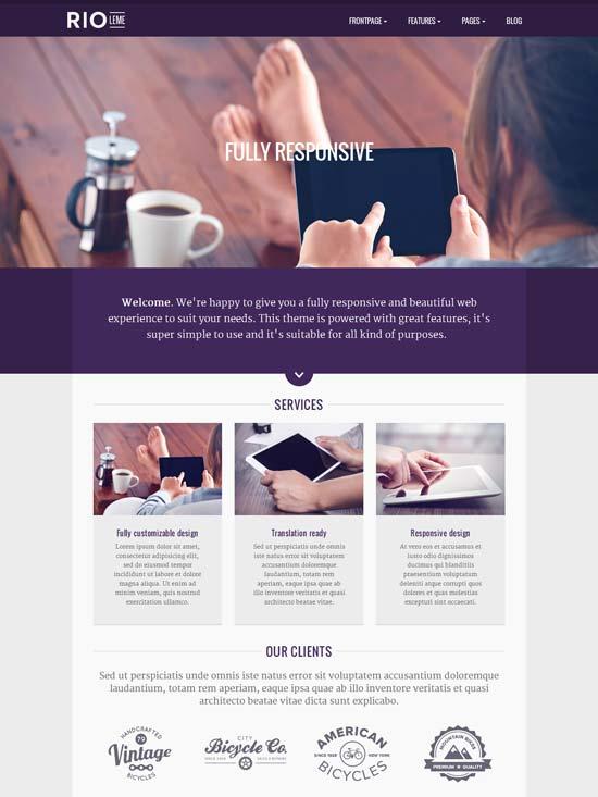 RioLeme-Responsive-Multi-Purpose-WordPress-Theme
