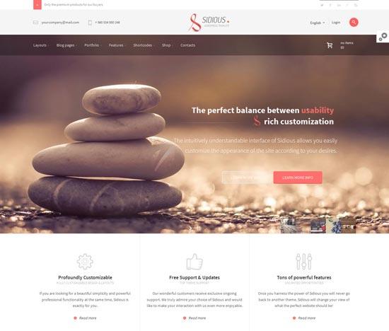 Sidious-best-WordPress-theme-2014