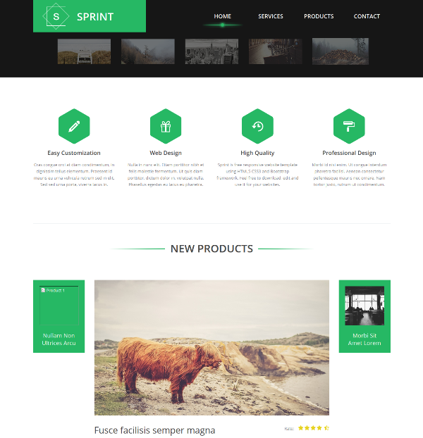 95+ Best Free Bootstrap HTML5 Website Templates