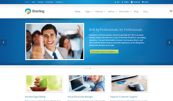 Sterling Business WordPress Theme