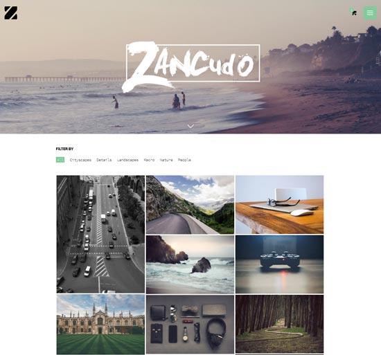 Zancudo-best-WordPress-theme-2014